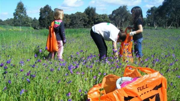 Keep Australia Beautiful National Litter Index